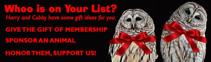 gift-giving-web-banner