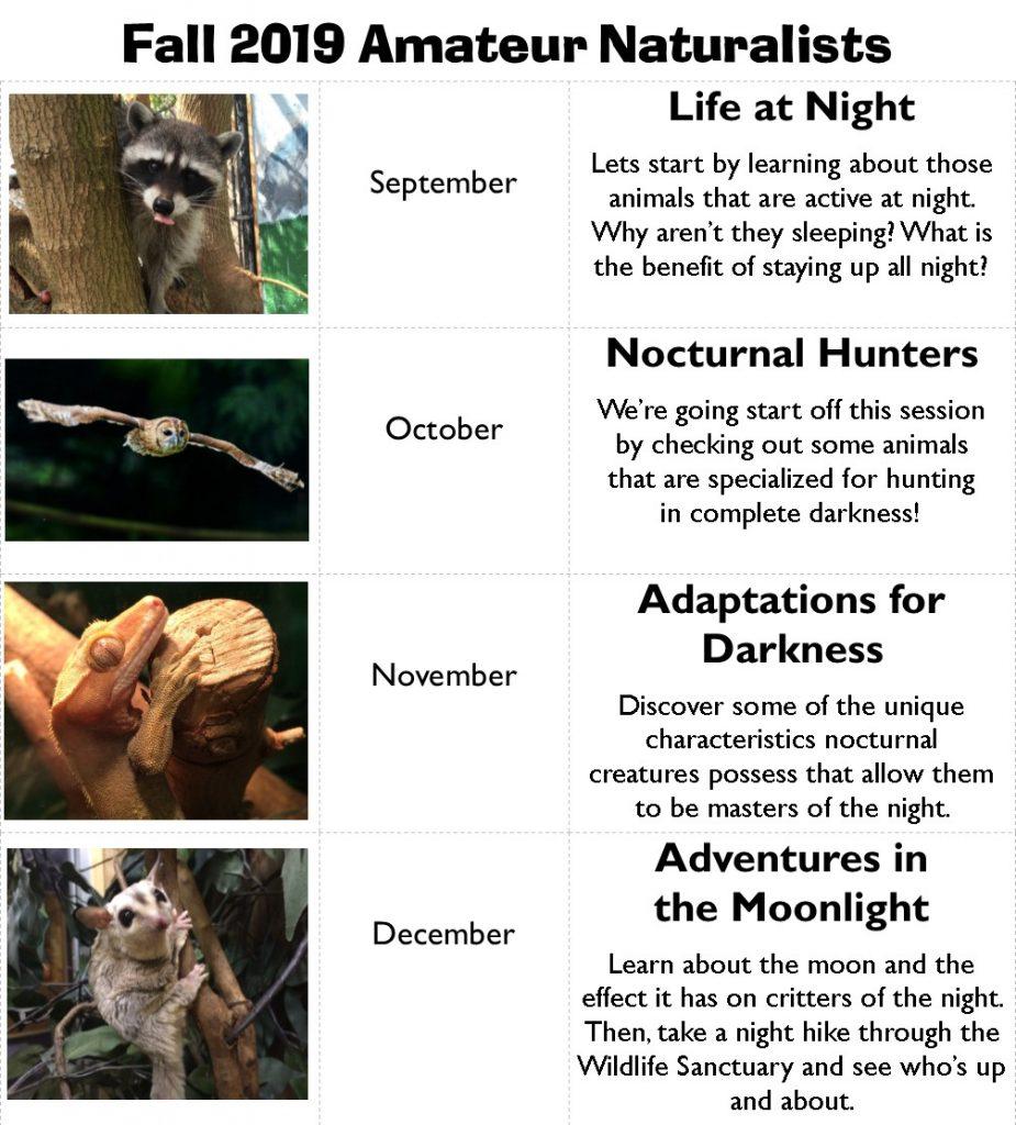 Amateur Naturalist @ The Wildlife Sanctuary  | West Hartford | Connecticut | United States