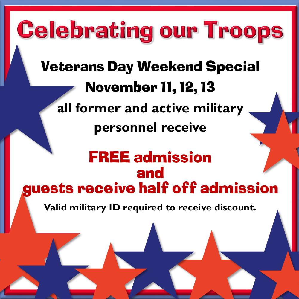 veterans-day-special-social-media