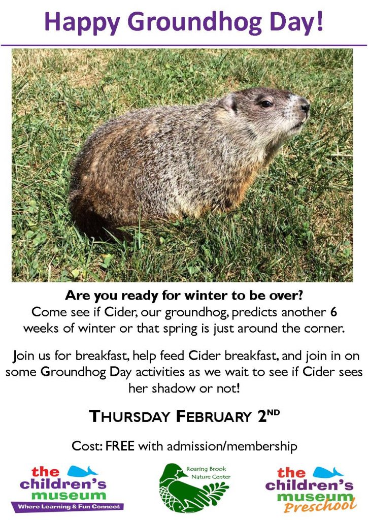 Groundhog Day @ The Children's Museum | West Hartford | Connecticut | United States